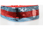 Sequin Head Band