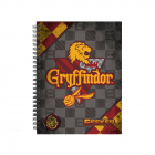 Caiet Harry Potter   Gryffindor A5  Quidditch