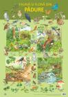 Plansa   Fauna Si Flora Din Padure