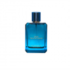FRAGRANCE WORLD DES TENTATIONS 100ML EDP