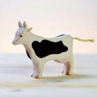 Vaca alb negru