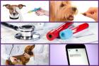 Pachet anual Preventiv caini pisici Talie animal 10 20kg