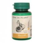 Macca 69 60cpr DACIA PLANT