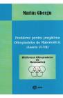 Probleme pentru pregatirea Olimpiadelor de Matematica Clasele VI VIII