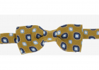 CC COLLECTION Linen and Silk Printed Bow Tie