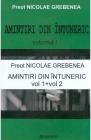 Amintiri din intuneric Vol 1 2 Nicolae Grebenea