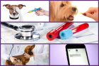 Pachet anual Preventiv caini pisici