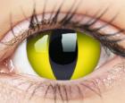 ColourVUE Crazy Lens 2 lentile Cateye