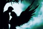 Puzzle Schmidt Julie Fain Angel Love 500 piese 59515
