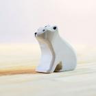 SET Ursi Polari Sloi de Gheata