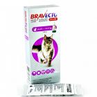 Bravecto Plus Spot On 500 mg pisici 6 25 12 5 kg