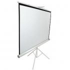 Ecran proiectie cu trepied T120NWV1 Profesional 240 x 180cm Format 4 3