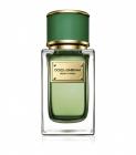 Dolce Gabbana Velvet Cypress