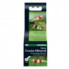 Tratament pentru apa Dennerle Nano Crusta Mineral