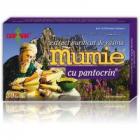 Extract de rasina mumie cu pantocrin 30tbl DAMAR