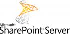 Microsoft CAL User SharePoint Server 2019 Standard OLP NL 1 User