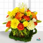 Aranjament floral Ceasca de bucurie