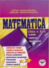 Matematica Cls 10 Sinteze De Teorie Exemple Rezolvate Exercitii Si Pro